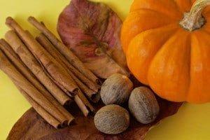 Pumpkin Spice Facial | Murfreesboro, TN